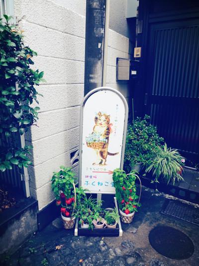 2015_7_31_7_45_18