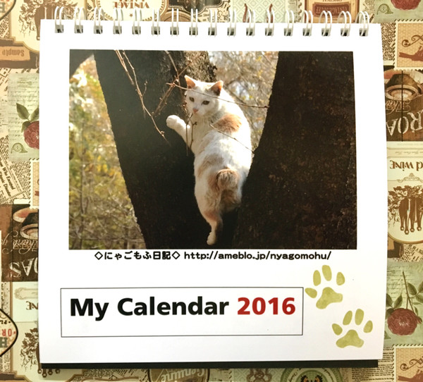 2015_12_24_2_22_49